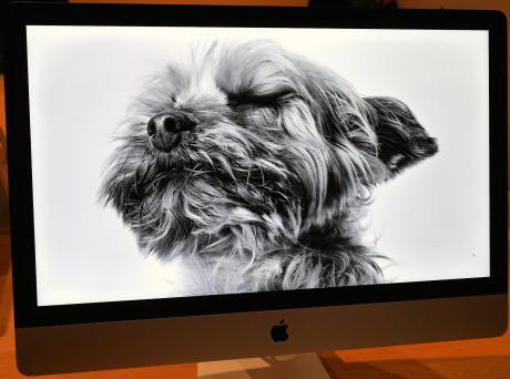 iMac-doggie