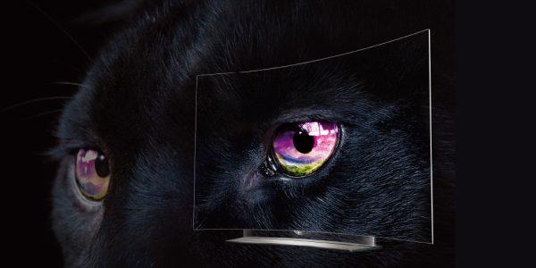LG 65EG960 – 4K OLED-tv