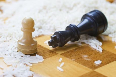 sjakk_ris