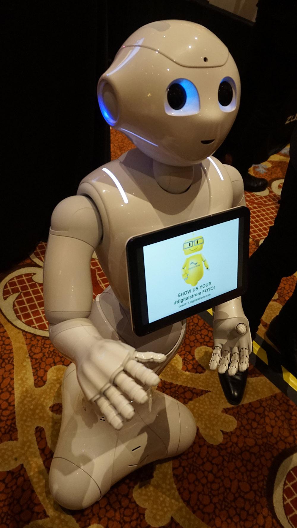 Robotterne kommer. Men de er ikke alle sammen humanoide, Foto: John Alex Hvidlykke, Lyd & Billede