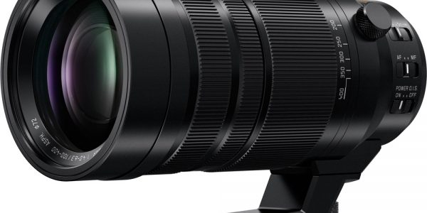 Panasonic Leica DG Vario-Elmar 100-400 mm f/4.0-6.3 ASPH Power OIS
